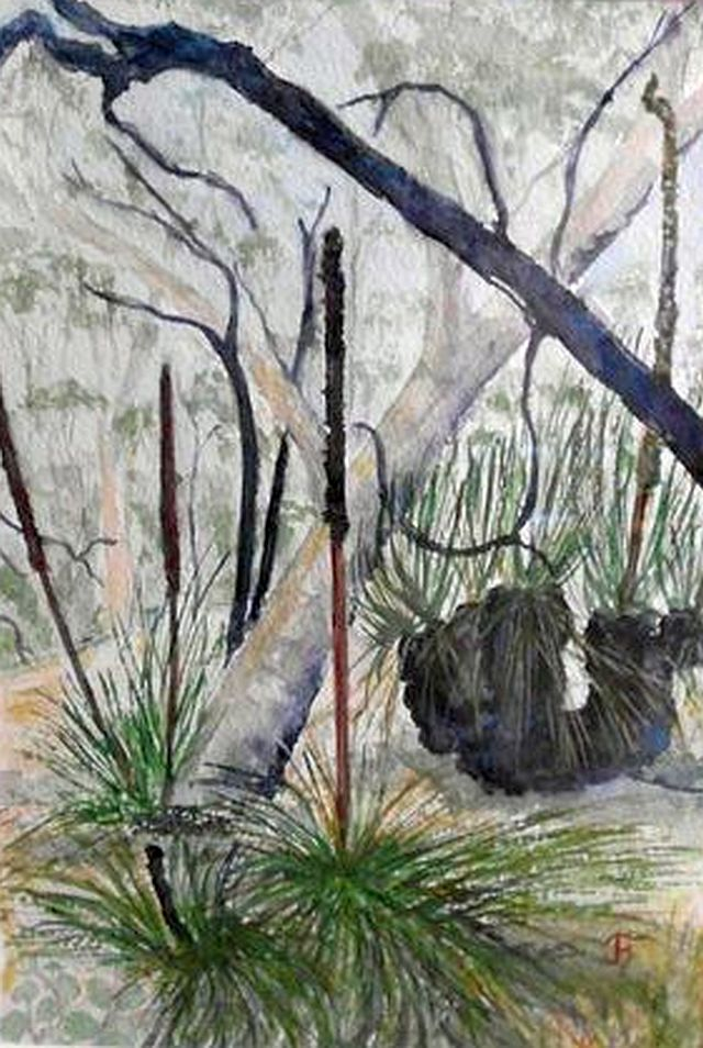 Mount Crawford Forest 1 Watercolour  Ink framed 32cm x 40cm  unframed 18cm x 22cm $150