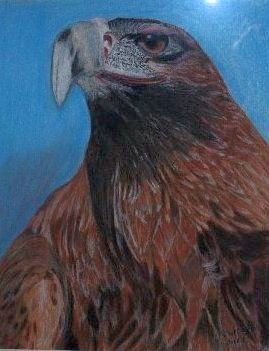 'Wedge Tailed Eagle' by Olive Wade sm