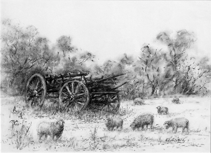 DSC05900.JPG Walter Gray Rural Chariot  Charcoal  $240 sms