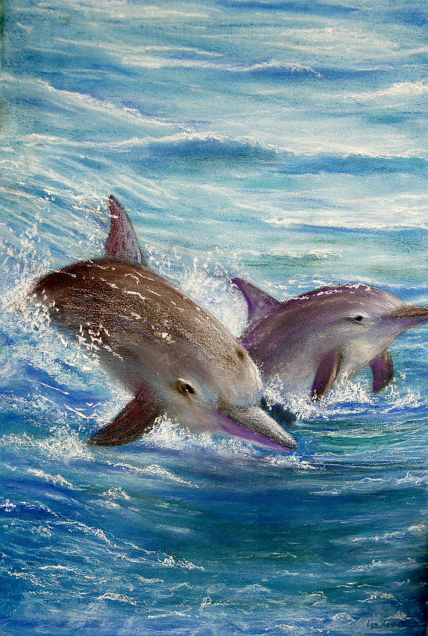 Dolphins playing - by Lyn Kennett DSC04505 sms