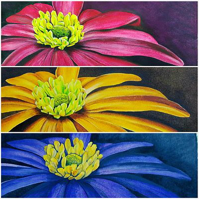 V__3E8E(2).jpg Melinda Radus 3 paintings daisies $1000 or $400 each sms